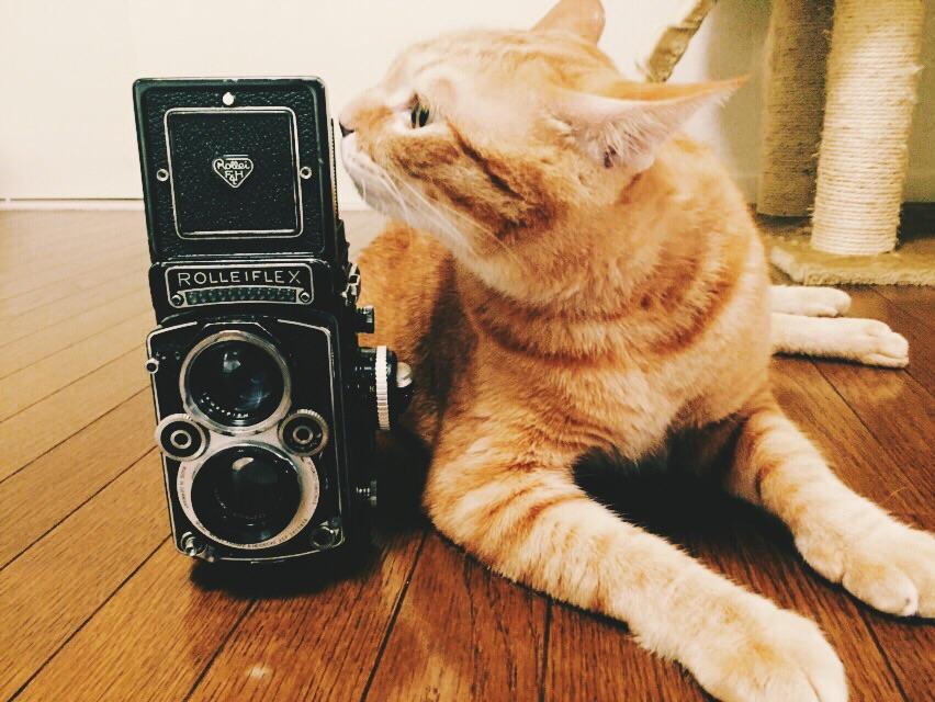cute_camera014