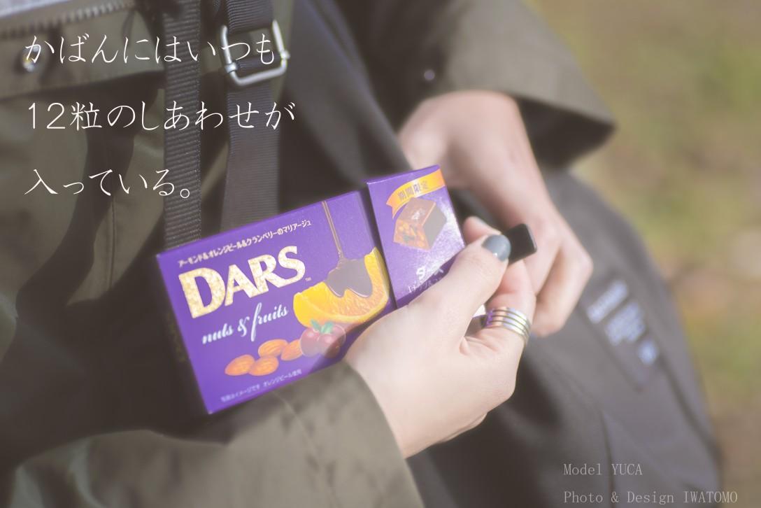 勝手に広告シリーズ~DARS編~