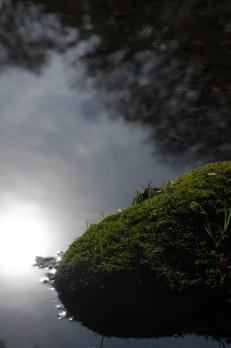 秋の小石川後楽園