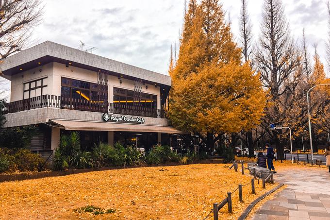 autumnleaves007