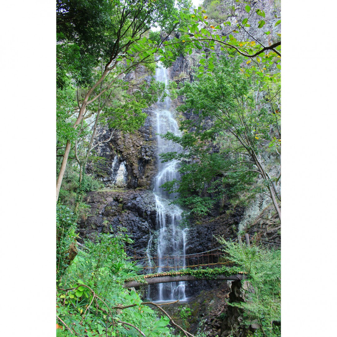 香川県三豊市 不動の滝