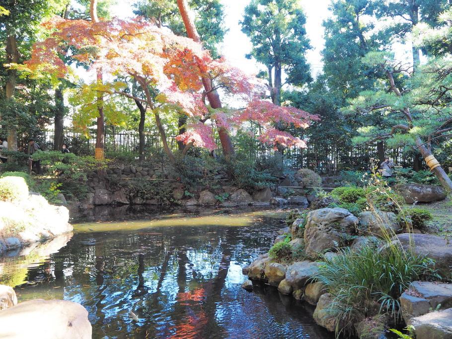 殿ヶ谷戸庭園~紅葉・1~