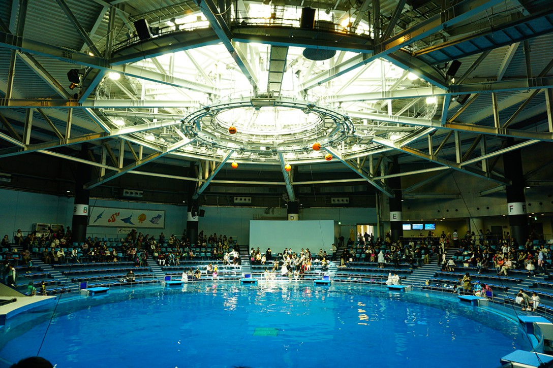 音と光のコラボレーション、新しい形の水族館《エプソン アクアパーク品川》