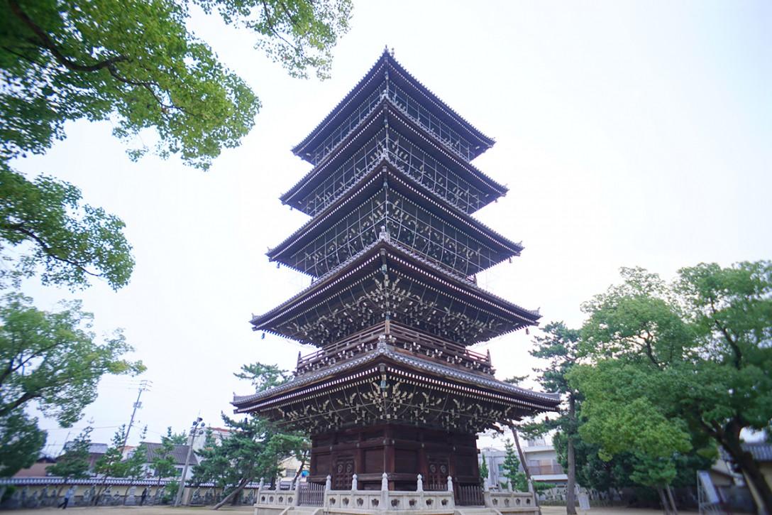 zentsuji013