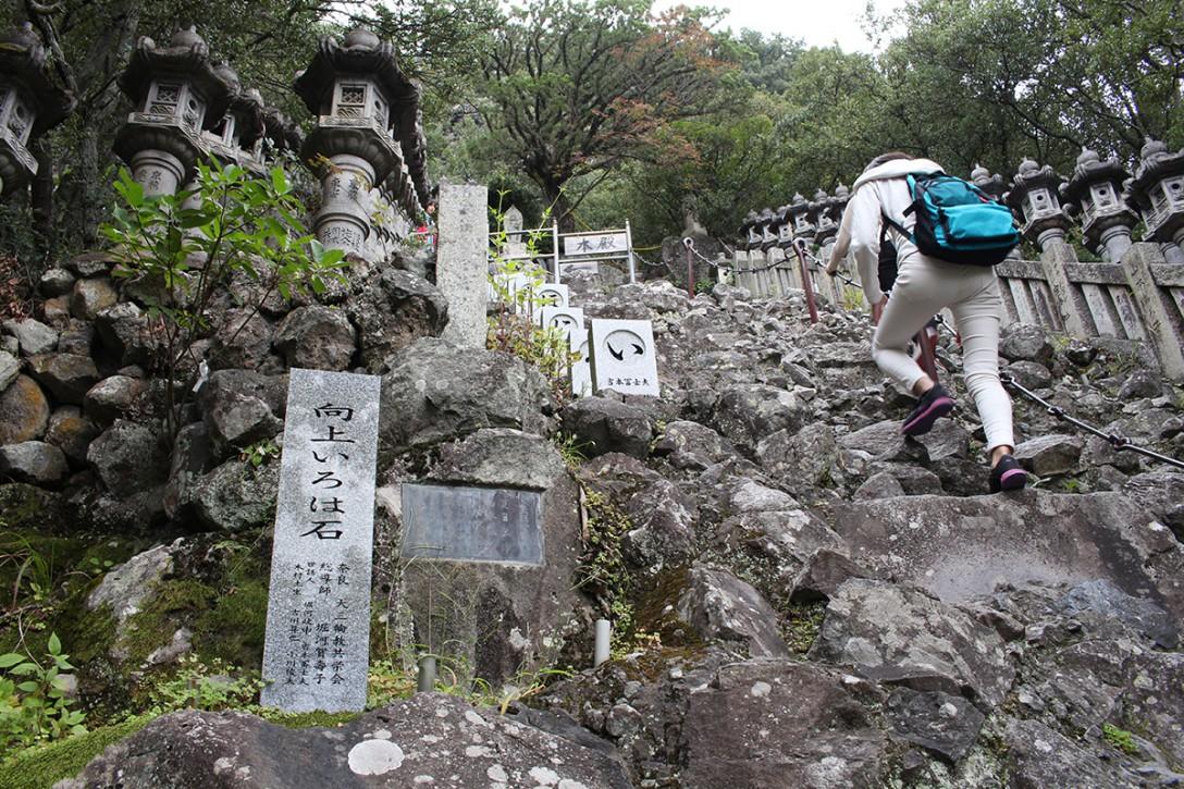 shodoshima018