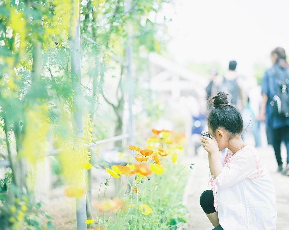 ◆写真②◆PRO160NS-Pentax 6x7-emi①