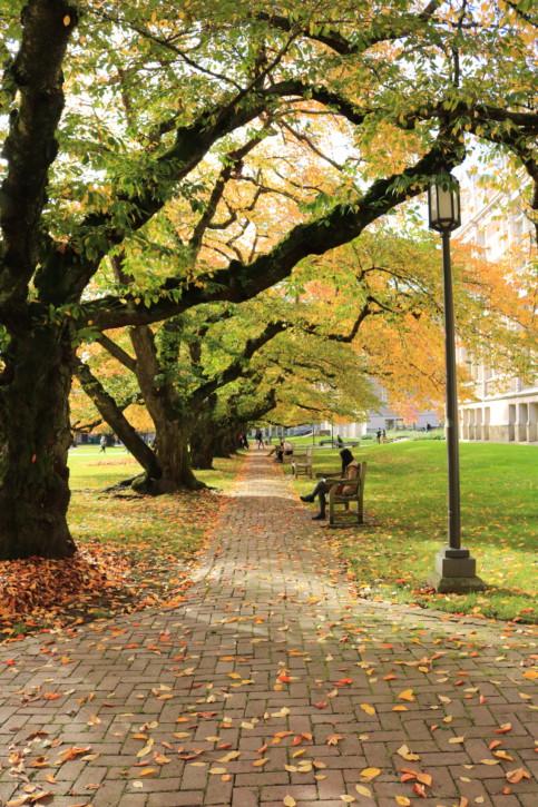 秋のシアトル