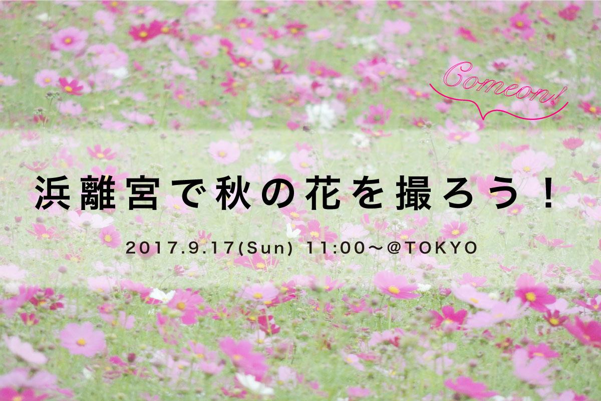 【9月17日】浜離宮で秋の花を撮ろう!
