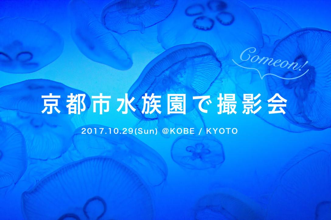 【10月29日】京都市水族館で撮影会!