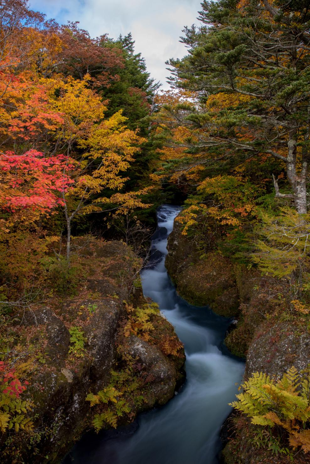 日光_竜頭の滝5
