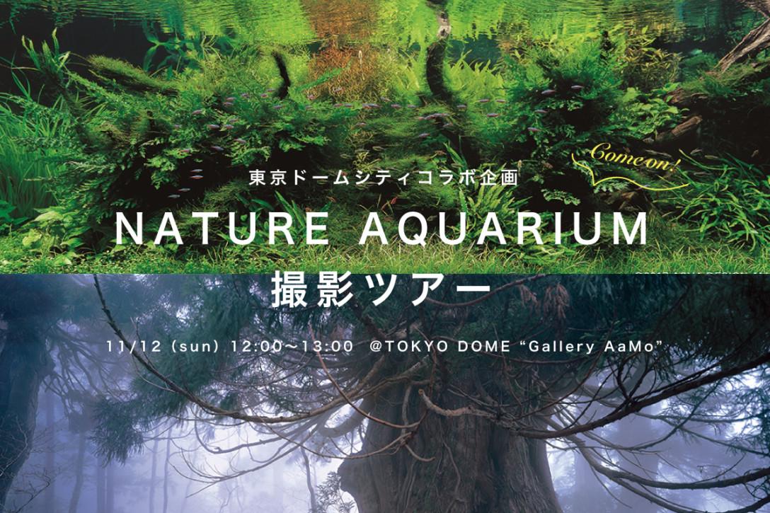 【11月12日】8名様限定!幻想的なネイチャーアクアリウム撮影ツアー<東京ドームシティコラボ>