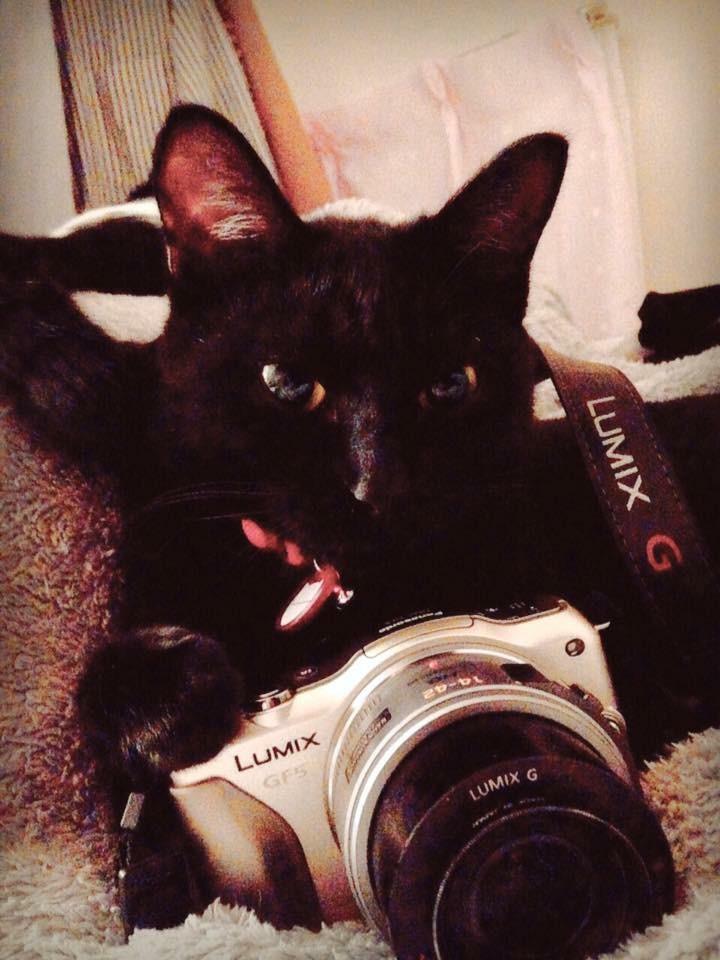 このカメラを使いはじめて3,4年目くらいなっちゃうのかしら。時の流れが早すぎてわからなくなってきたゾ。