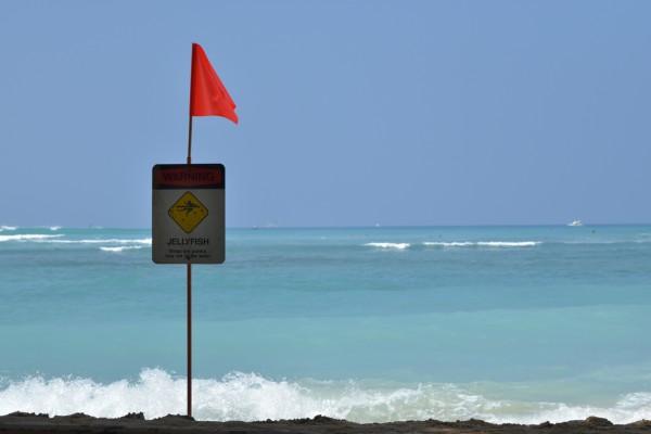 Hawaii、海、波