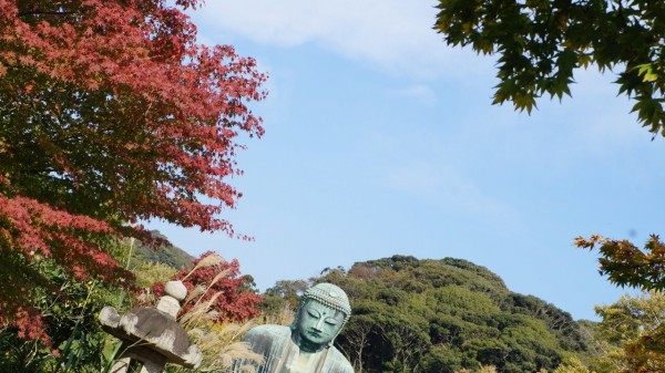 鎌倉✖︎紅葉