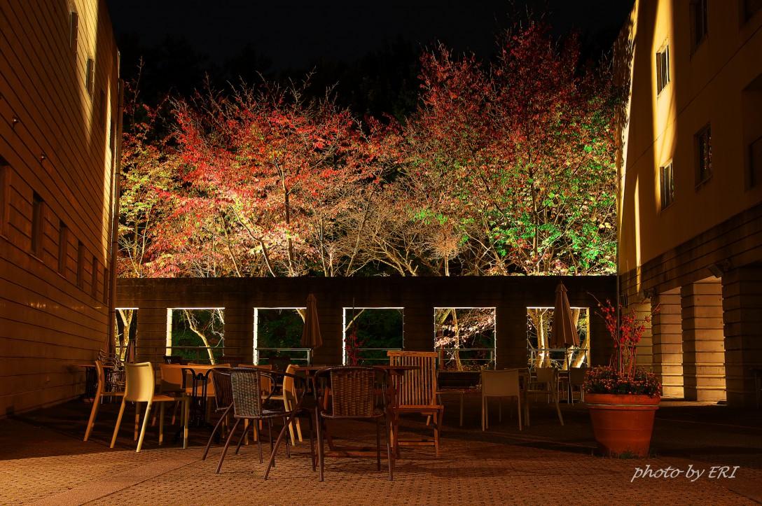 秋色の小淵沢から蓼科の旅