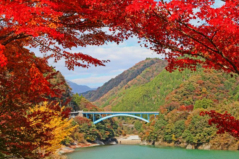 丹沢湖の紅葉