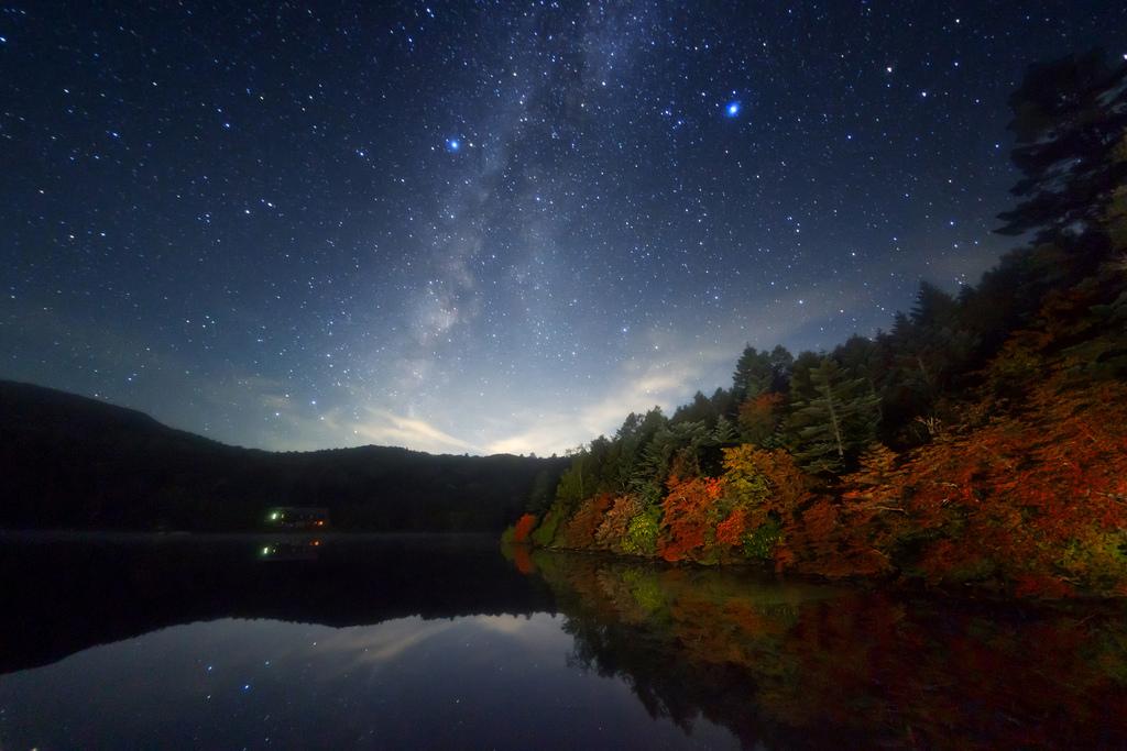 長野県 南佐久郡 白駒池の星空