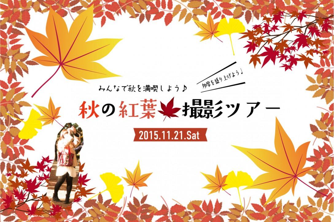 秋の紅葉撮影会