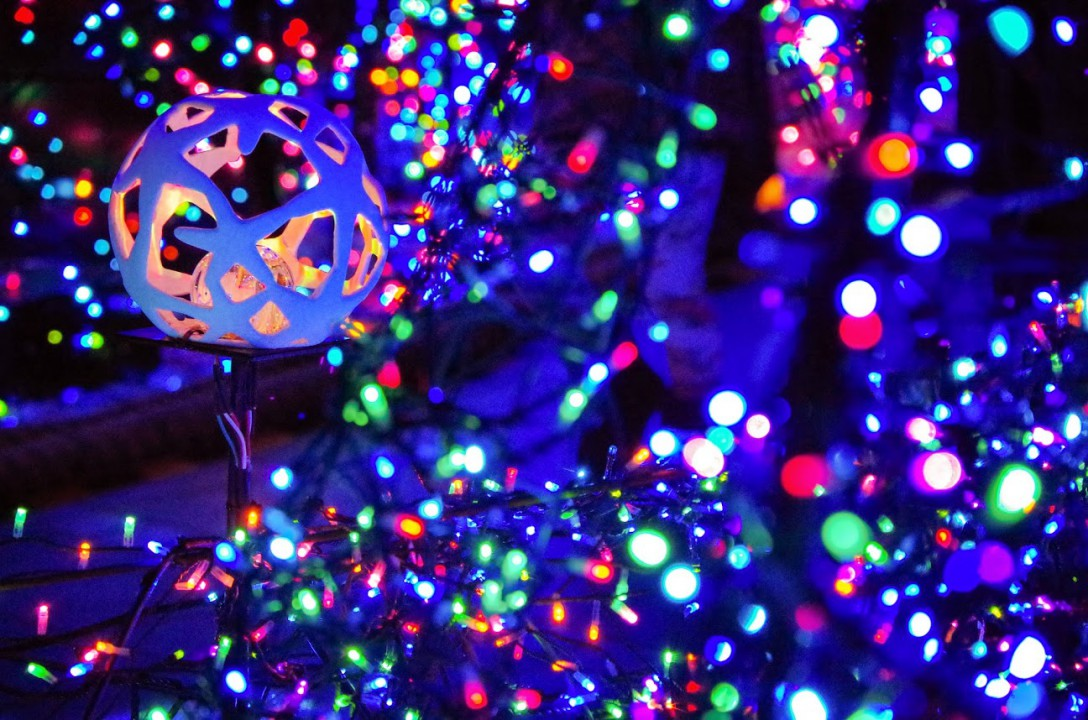 Caretta Illumination2015