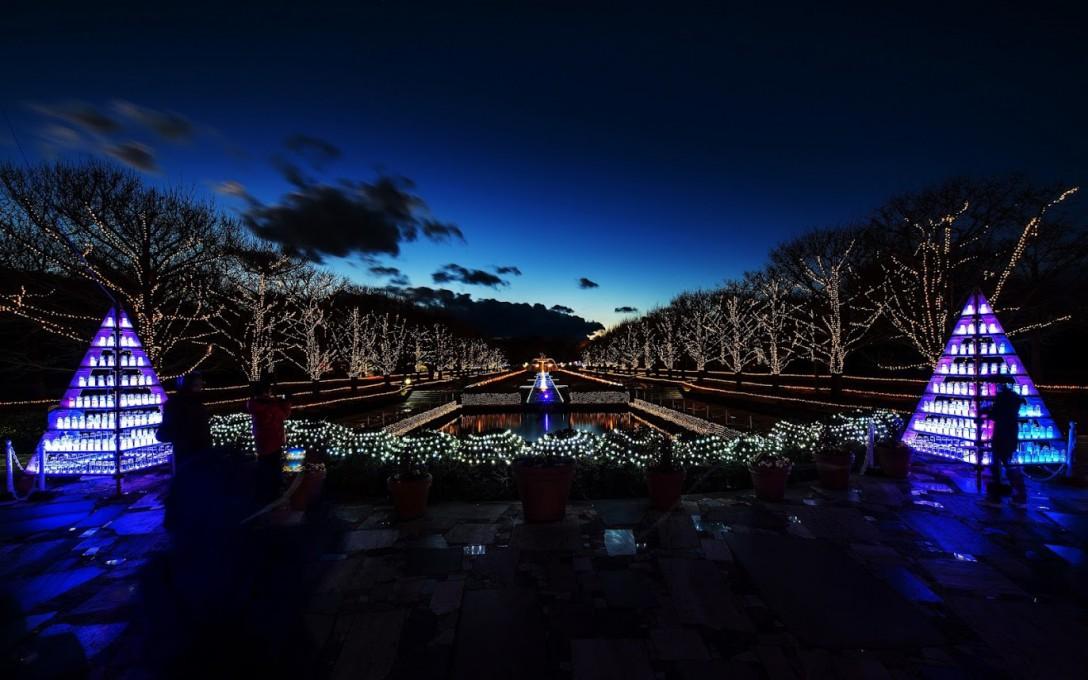 Winter Vista Illumination 2015(昭和記念公園)
