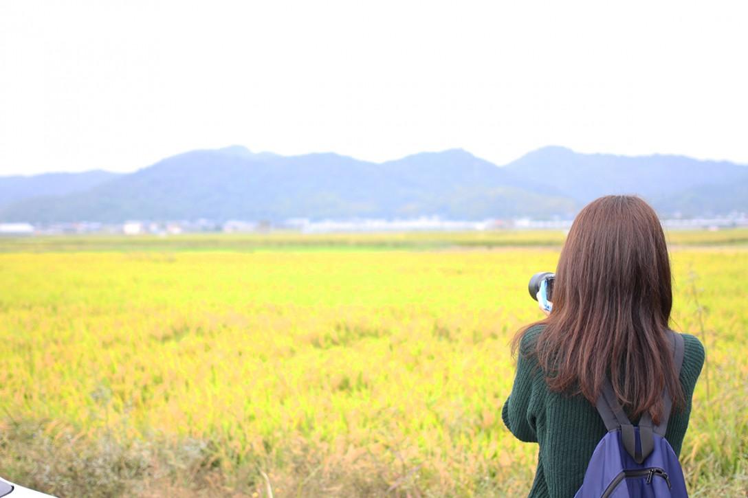 【まさかのイルカ】香川県で大冒険ができる!?と話題の街へ行ってきました!