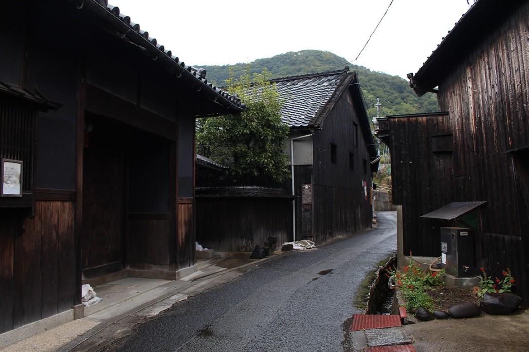 shodoshima048