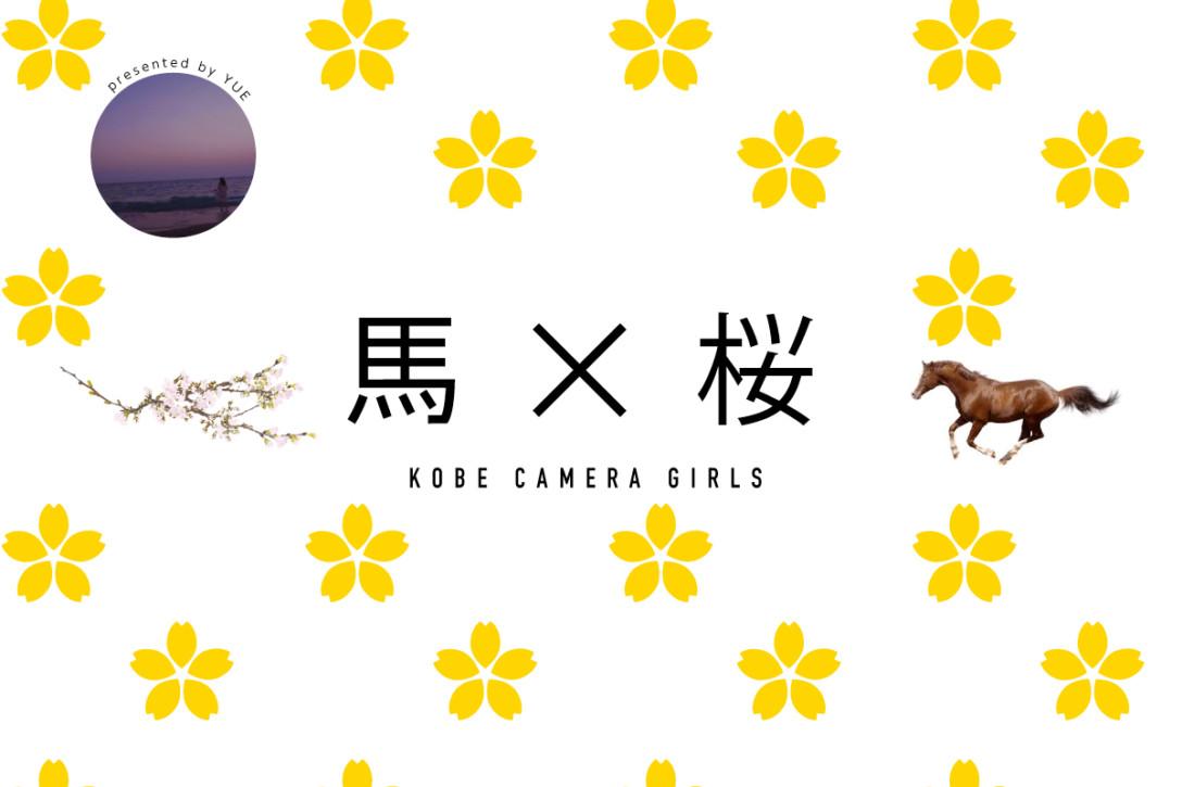 「馬×桜」お花見&競馬撮影会in神戸