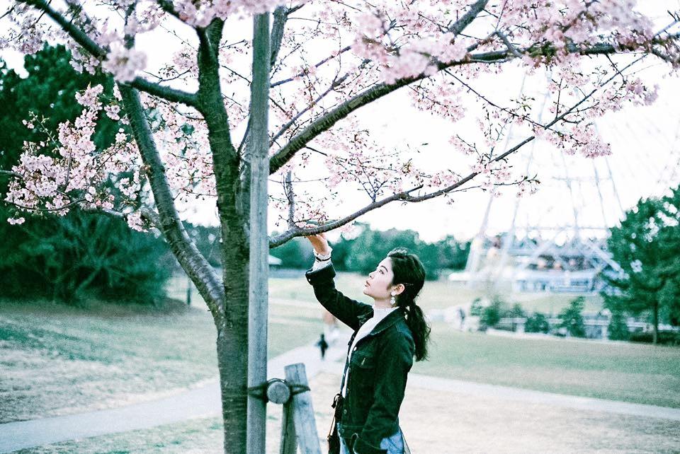 テーマフォトラリー企画vol.1『私だけが見つけた、春。』