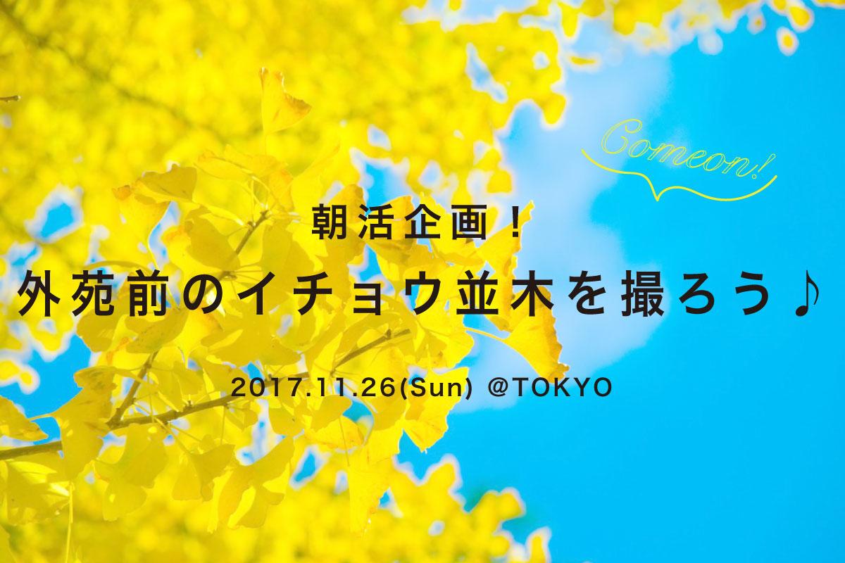 【11月26日】朝活企画!外苑前のイチョウ並木を撮ろう♪