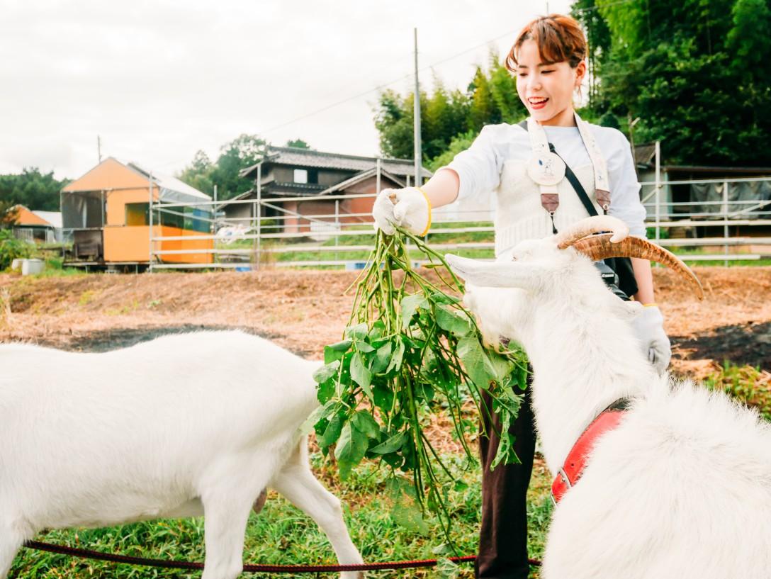 岡山県農村企画_56